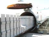 AAC volant le bloc de brique de cendres faisant les machines et l'usine