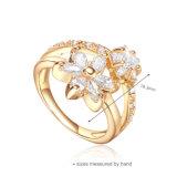 2016 Valentinstag-Großhandelsschmucksache-Ring (R-0451)