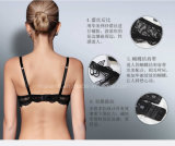 Sujetador respirable y Panty del corsé de las señoras del cordón de la alta calidad