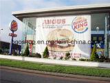 Afficheur en bannière en tissu PVC tissu impression numérique (1000X1000 9X13 370g)