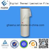 Pellicola termica della laminazione di legame eccellente per stampa di Digitahi (lucentezza 35mic)