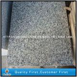 Dalles en de béton gris-clair normales bon marché de granit de G623 Padang pour paver/jardin