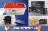 SiegelMaintenance Free Car Batteries DIN100mf 12V 100ah