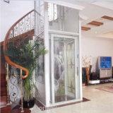 Elevatore personale esterno dell'interno della casa della villa del passeggero piccolo