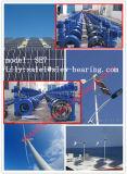 Impulsión solar de la ciénaga de los sistemas de las energías eólicas del sistema de seguimiento