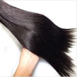 自由な出荷の加工されていないバージンの人間の毛髪の編むこと