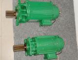 2.2 KW Aangepaste Motor voor het Elektrische Hijstoestel van de Kabel van de Draad