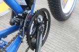 びんのリチウム電池が付いている26*4.0inch脂肪質のEバイク