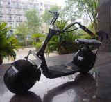 Cochi elettrici della città del motorino del pneumatico grasso della fabbrica 1000W della Cina (JY-ES005)