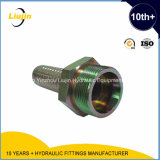 油圧CouplingsかHose Connectors/Metric Male 24degree Cone Seat L.T. Hydraulic Hose Fittings 10411
