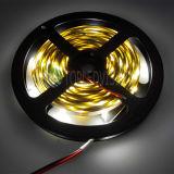 IP65 indicatore luminoso impermeabile della corda di alta qualità 2835 30LEDs LED