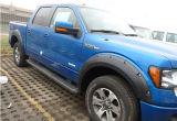 Schutzvorrichtung Flare für Ford F150 2009-2014