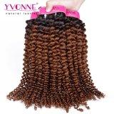 Da extensão brasileira do cabelo da qualidade superior cabelo Curly Kinky de Ombre