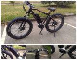 電気自転車モーターによって中間駆動機構を電気バイクとオンラインで買いなさい