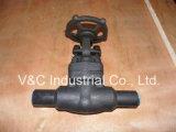 Válvula de puerta de alta presión del capo del tornillo con el extremo del Bw