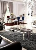 Мебель мрамора верхней части просто конструкции установила для сбывания