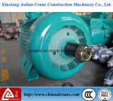 O motor de C.A. elétrico dobro resistente do eixo de saída