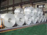 Plateaux ronds de papier d'aluminium de service de traiteur