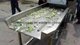 Máquina de desecación vegetal de la vibración, deshidratador vegetal
