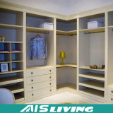 Wardrobes do armário Walk-in da cor da natureza (AIS-W166)