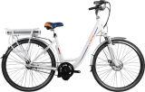 28 Inch-Lithium-Batterie-Stadt-elektrisches Fahrrad (LN28C02)