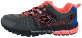 メンズは遊ばす運動靴の屋外の履物のトレーニングの靴(815-7070)を