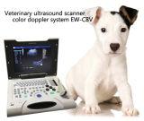 Machine diagnostique Ew-C8V de couleur d'ultrason vétérinaire portatif de Doppler avec la sonde Micro-Convexe C3.5r10 pour de petites parties d'animal