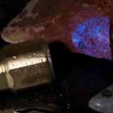 Noten-Bedienschalter-Aluminiumtaschenlampe mit Cer