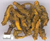 Rhizoma Coptidis P.E.のCoptisのChinensisエキスの粉