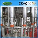 Monoblock 주스 음료 채우는 장비 (RCGF24-24-8)