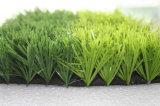 Erba artificiale, erba di gioco del calcio, erba di Fustal, sport, nuovi