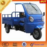 Motor Triwheeler de la carga de las tiendas del paño de China