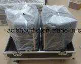 Koaxialstadiums-Monitor-Berufslautsprecher (CO15)