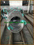 高品質のチタニウムの合金の管/管のチタニウムGr. 11