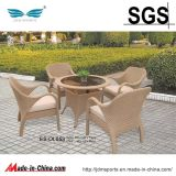 정원 Furniture Rattan 또는 Rattan Furniture Set (ES-OL053)