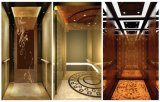 Cabine passagers de levage d'ascenseur, modèle à la maison de cabine d'ascenseur