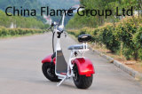 60V/30ah F/Rの中断2シートが付いている1500W電気計量器のスクーター