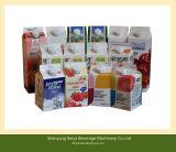 Líquido de cartón con tapa de cartón máquinas de embalaje (BW-2500)