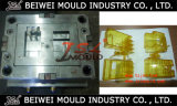 Injection plástico Molding Service em China