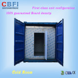 Best Cold Room in China with 100mm