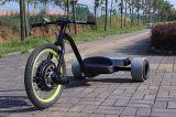 허브 모터를 가진 3개의 바퀴 Eelctric 편류 Trike