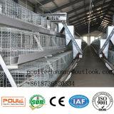 La poulette automatique Aframe de poussin de poulette de matériel d'aviculture met en cage le constructeur/fournisseur de cage de volaille en Chine