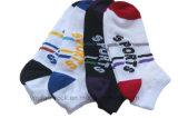 Coton peigné/chaussette en nylon de sport avec la maille