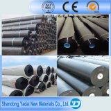 1mm/1.5mm/2mm 방수 막 PVC Evb PE LLDPE HDPE Geomembrane 강선 호수 강선 매립식 쓰레기 처리 또는 양어법