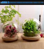 Campana de cristal de cristal del arte de las decoraciones caseras de la bola para los regalos de día de fiesta