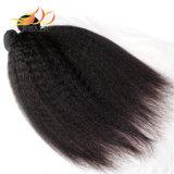 Estensione brasiliana 100% dei capelli umani di Remy del tessuto dei capelli del Virgin