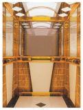 Um elevador do passageiro da garantia do ano