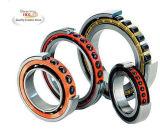 Rolamento, rolamento Auto, Taper Roller Bearing, cilíndricos Roller Bearing