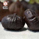 중국 유기 단 하나 전구 검정 마늘 700g