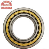 High Precision Low Noise Cylindrical Roller Bearing Series (NU204, NJ, NF, NUP)